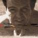 Rodrigo Beheregaray